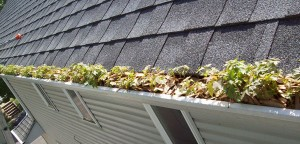 Signs Your Gutters Need Replacing